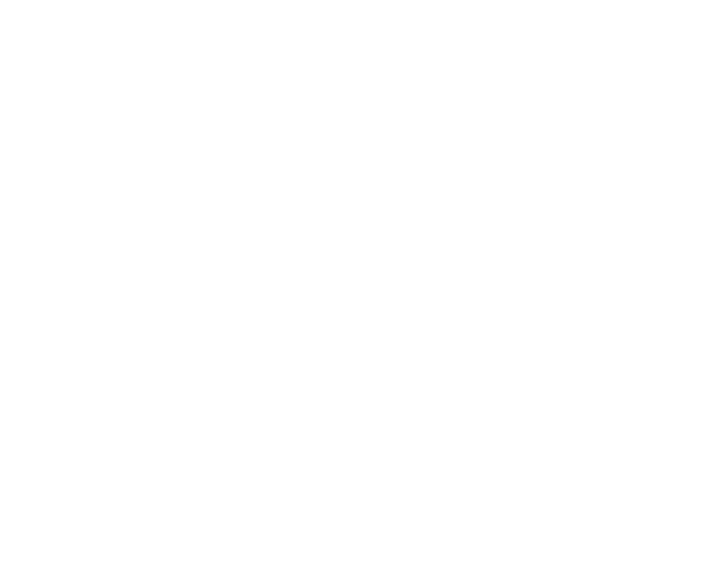 Alicia D'Elia Photography